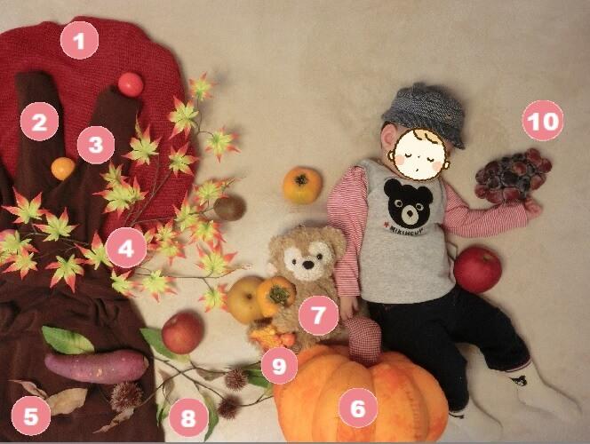 寝相アート 収穫&紅葉の秋 手順